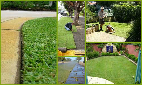 Chesterfield Lawn Maintenance Picture Perfect Colonial Heights Va 23834
